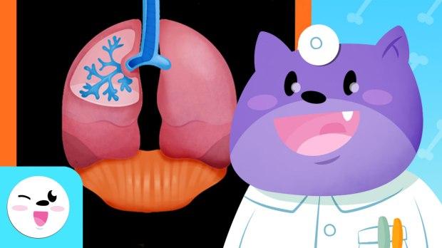 6.respiratorio (1)
