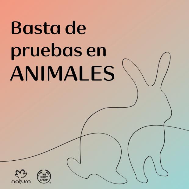 Basta de pruebas en animales